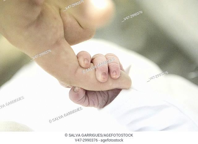 First picture of a newborn, the little hand of the baby take the finger of his mother in his first day of life