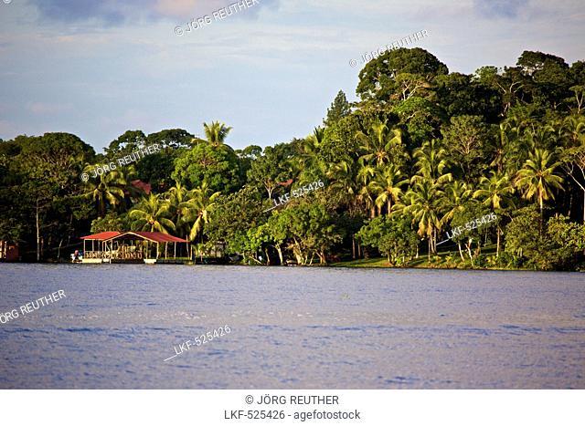 Banks of Rio Dulce near Fronteras, Guatemala, South America
