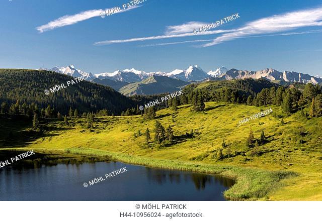 Alpine panorama, August, view, mountain, mountaintop, Brienzer Rothorn, Eiger, spruce, Fiescherhorn, summit, peak, Jungfrau, monk, Mönch, Rosenhorn, Schreckhorn