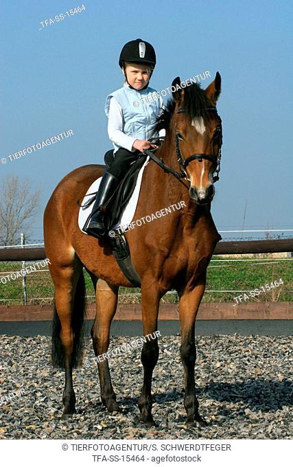 girl rides German Riding Pony