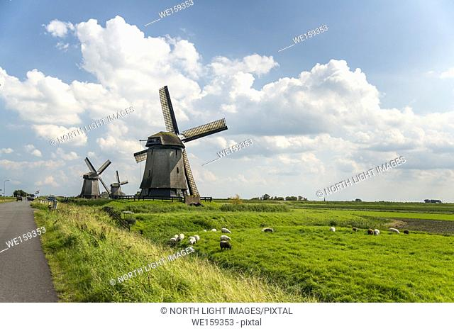 Europe, Netherlands, Shermerhorn. Traditional Dutch windmill, now serving as a museum and tourist attraction