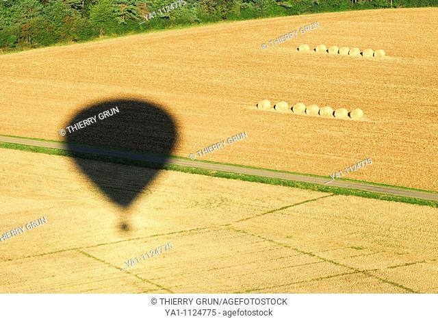 Hot air balloon shadow over harvesting wheat field. Meuse, Lorraine region, France
