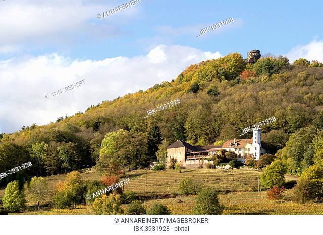 Slevogthof Neukastel mansion at Leinsweiler, Southern Wine Route, Southern Palatinate, Rhineland-Palatinate, Germany