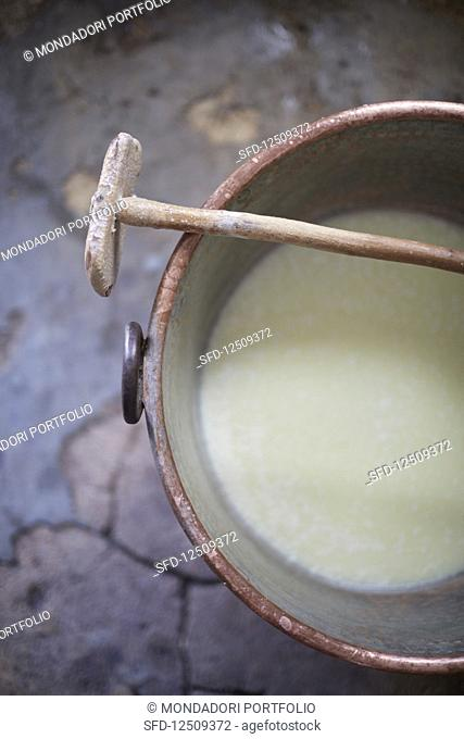 Sheep and goat milk in a bucket