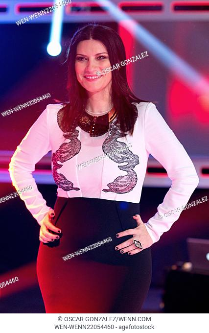 Singer Laura Pausini presents the new season of 'La Voz' at 'Picasso' studios on January 9, 2015 in Madrid, Spain. Featuring: Laura Pausini Where: Madrid