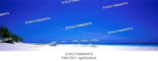Pink Sand Beach, Harbour Island, Bahamas, No Release