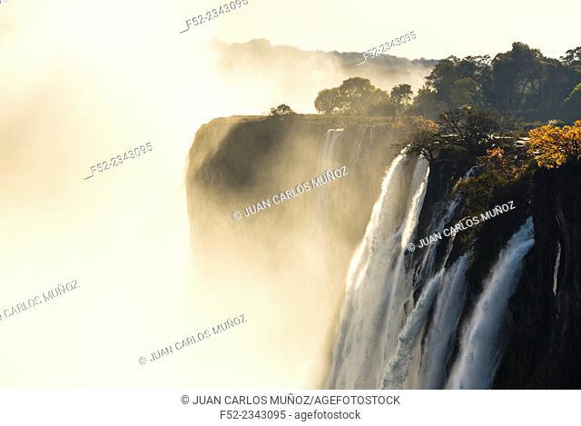 Victoria falls, Zambezi river, Zambia, Africa