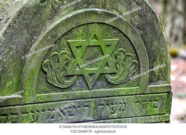 Jewish Cemetery on Bracka street in Lodz, this biggest Jewish cemetery in Europe contains over 180 000 graves and 65 000 tombstones