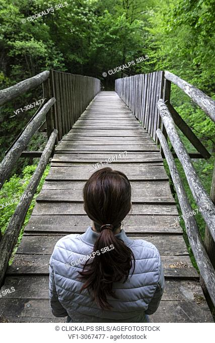 A girl crossing a wooden bridge on the trail of the Breggia gorges, Muggio Valley, Mendrisio District, Canton Ticino, Switzerland