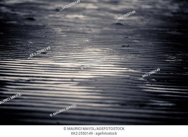 sand waves, low tide in North sea, Zeeland, The Nederlands