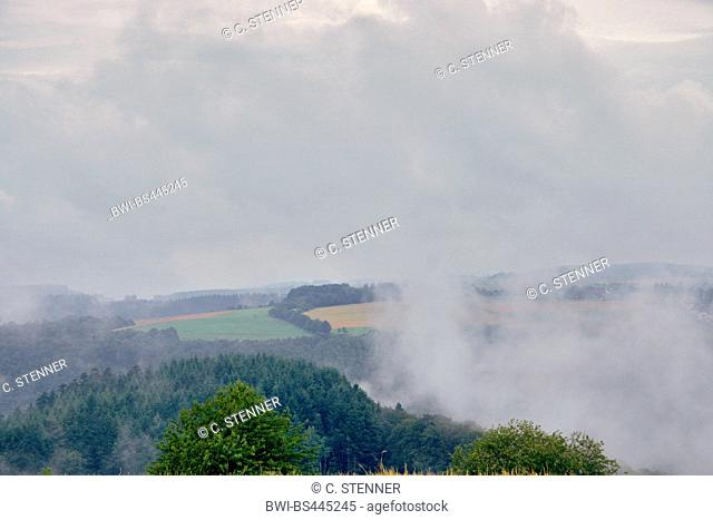 mist over landscape at hiker path Rockenburger Urwaldpfad, Germany, Rhineland-Palatinate, Hunsrueck