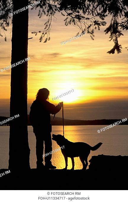 silhouetted, released, outdoors, silhouette, wa, model