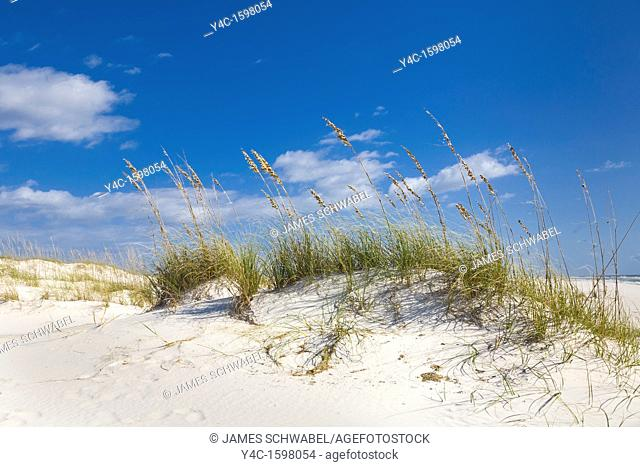 Sand dunes in the Perdido Key Area of Gulf Islands National Seashore near Pensacola Florida
