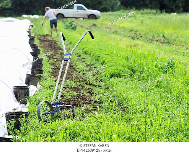 Wheel hoe and a woman gardening in the background; Upper Marlboro, Maryland, United States of America