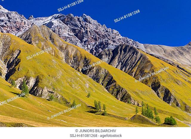 View of Piz Fier, Val Trupchun, Swiss National Park, Graubuenden, Switzerland