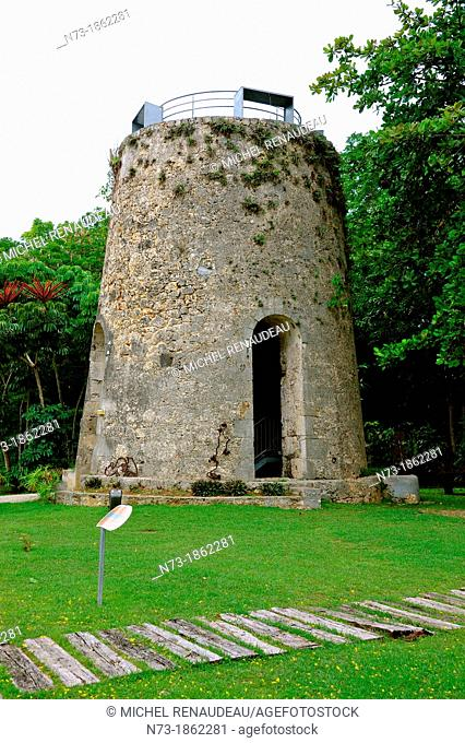 France, West Indies, Guadeloupe, Grande Terre, Beauport, the country of the cane