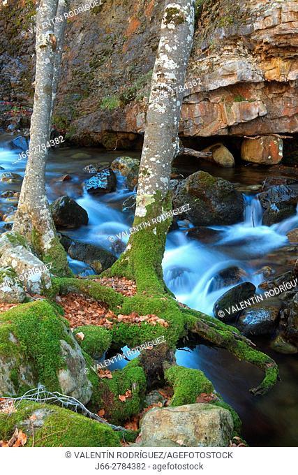 River Puente Ra in the natural park of the Sierra Cebollera. La Rioja