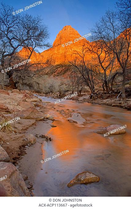 Alpenglow reflections in the North Fork of the Virgin River at sunset, Zion National Park, Utah, USA