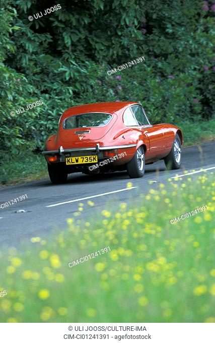 Car, Jaguar E-Type Serie III, vintage car, model year 1971-1975, 1970s, seventies, convertible, red, driving, diagonal back, back view, road, country road