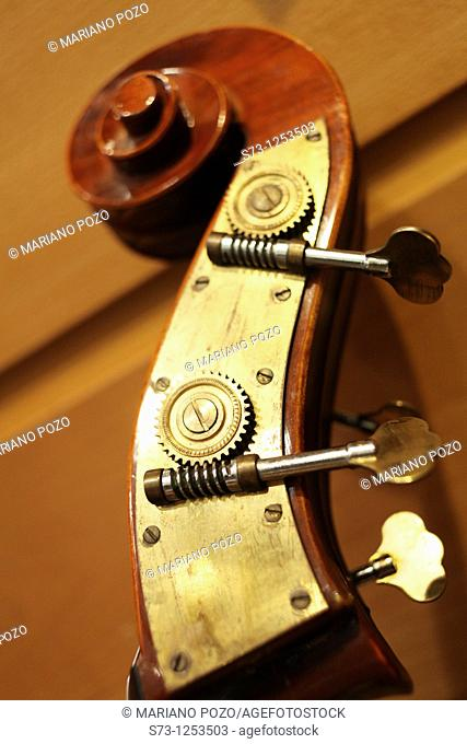 Detail of Cello
