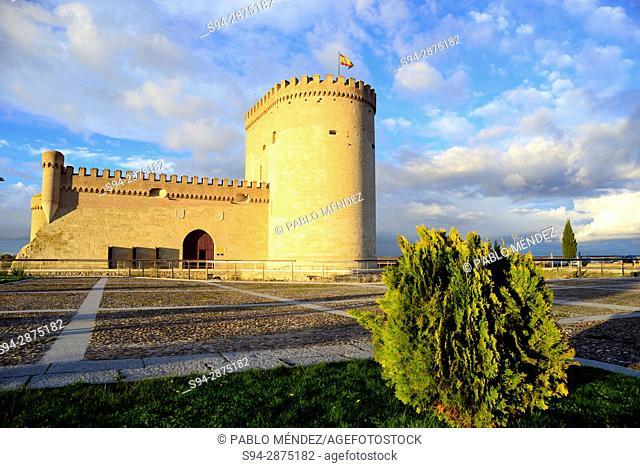 Castle of Arevalo, Avila, Spain