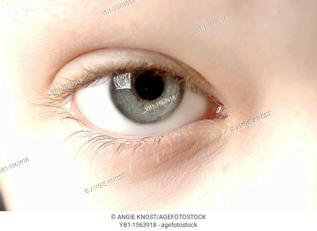 Close Up Macro Photo An Eleven Year Old Boy's Eye