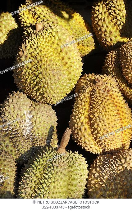 Chiang Mai (Thailand), Durian fruit sold in the street