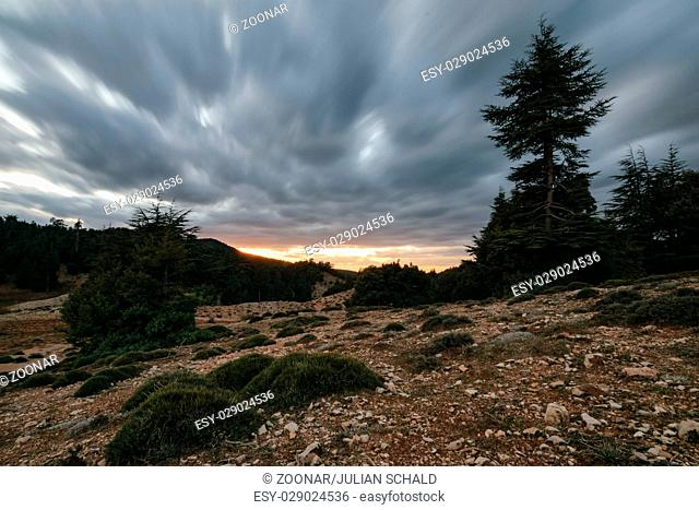 Storm clouds in a bleak landscape, Ifrane, Morocco