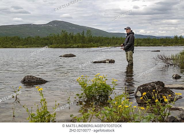White man fishing, standing in the water, looking happy and smiling, mountain in background and flower king cup in foreground, Rautas river, Kiruna county