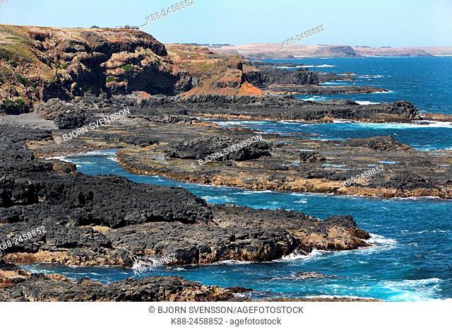 The Nobbies on Phillip Island, Victoria, Australia