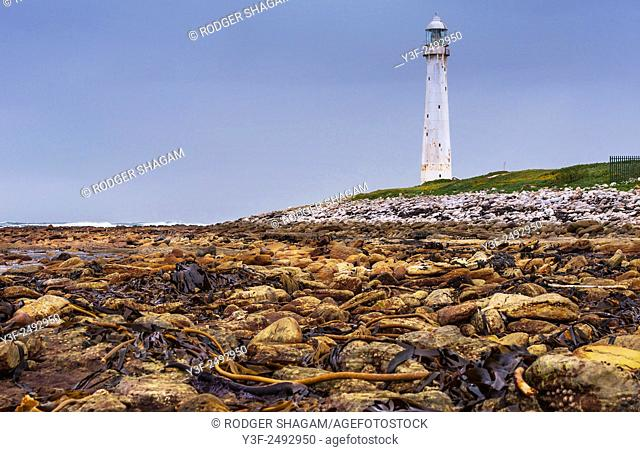 Slangkop Lighthouse, near Cape Town, South Africa stands tall at spring low tide