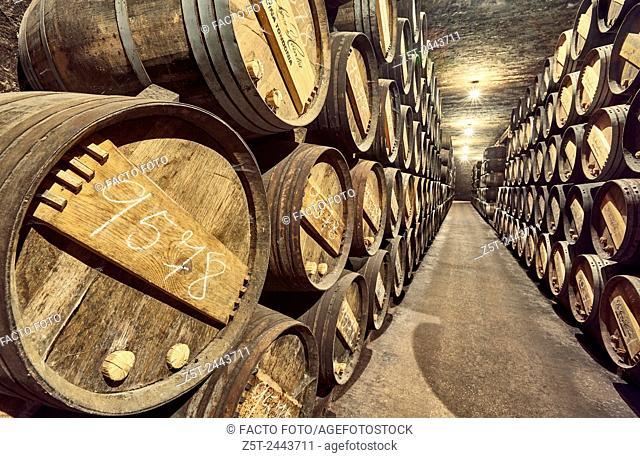 R. Lopez de Heredia Viña Tondonia wine cellar. Haro. La Rioja. Spain