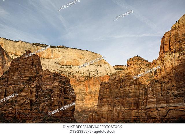 Towering sandstone cliffs in Zion National Park