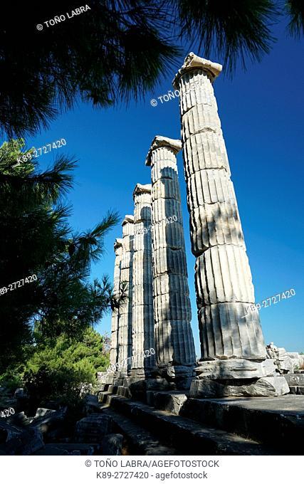 Sanctuary of Athena. Priene. Ancient Greece. Asia Minor. Turkey