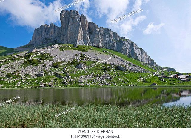 mountains and Lac d'Ai lake in Leysin in the canton of Vaud