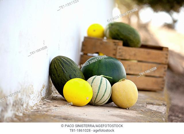 Spain, Murcia, Melons Sitting by Wall