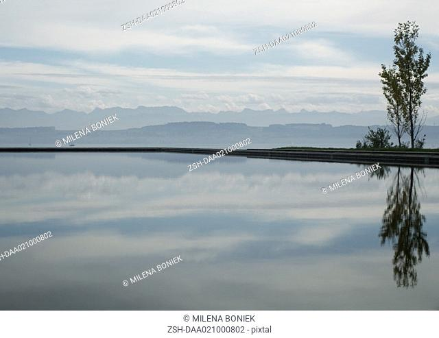 Seascape with tree reflected in water