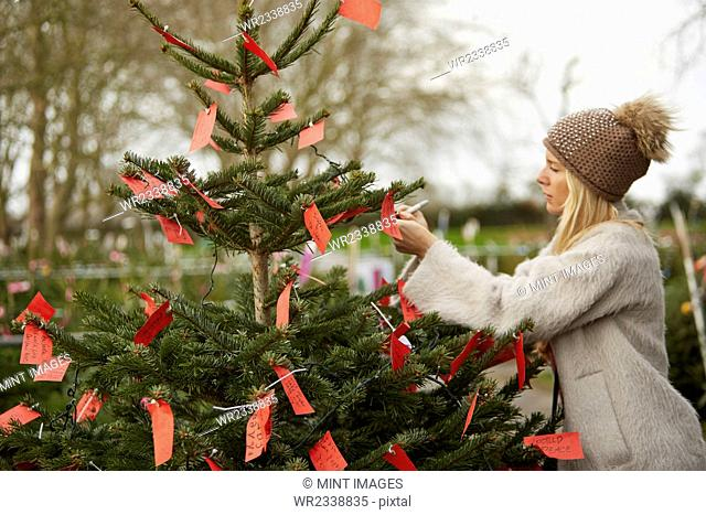 A woman reading handwritten red labels tied to the branches of a Christmas tree