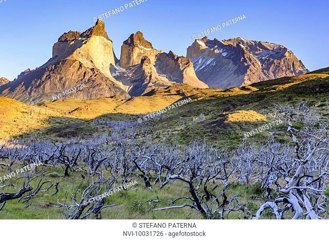 Cuernos del Paine at sunrise, Torres del Paine National Park, Patagonia, Chile