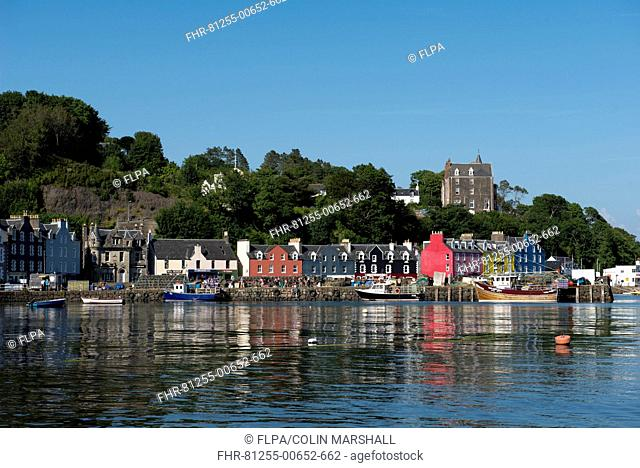 View of fishing boats at harbour of coastal town, Tobermory, Isle of Mull, Inner Hebrides, Scotland, July