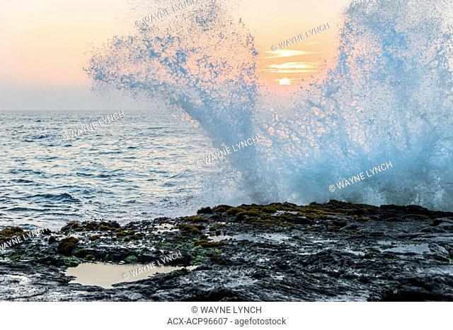 Pounding surf, Wawaloli Beach Park, Hawaii Island (Big Island). Hawaiian Islands, central Pacific Ocean, USA