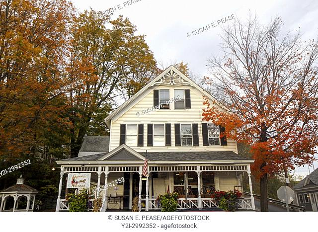 Chapman's Antiques, Wilmington, Vermont, United States, North America