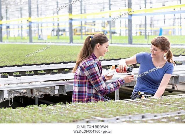 Two women in greenhouse having a coffee break