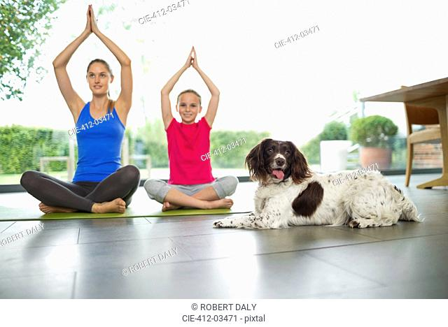 Dog sitting with mother and daughter practicing yoga