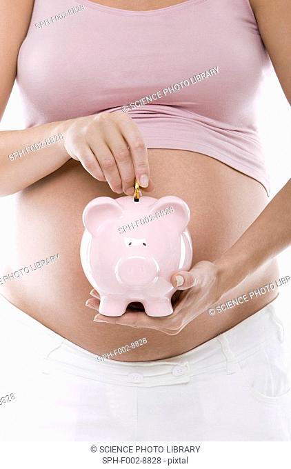 Saving for the future. Pregnant woman putting savings in a piggy bank. She is 27 weeks pregnant