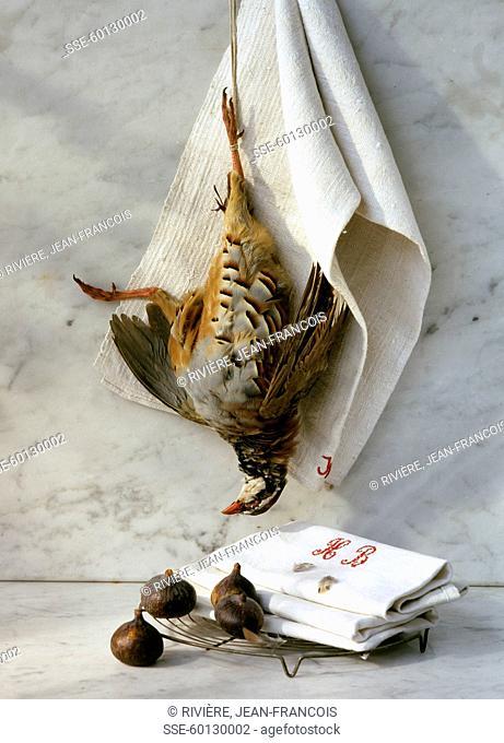 Partridge hanging and scorzonera