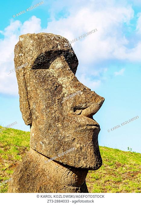 Moai at the quarry on the slope of the Rano Raraku Volcano, Rapa Nui National Park, Easter Island, Chile