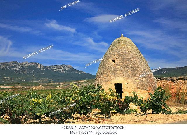 Hut, San Vicente de la Sonsierra, Rioja wine region, spain