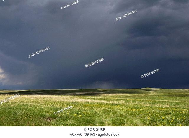 Prairie Storm  A heavy dark rain cloud is the result of a violent disturbance of the atmosphere with strong winds and usually rain, thunder and lightning