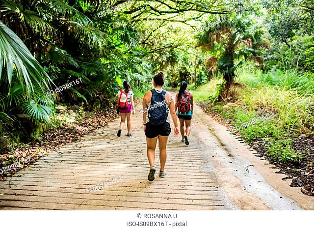 Hikers on Moanalua Valley Trail, Oahu, Hawaii